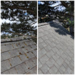 Forcewashing - Roof Cleaning Before and After Photo - Roof Cleaners in Vancouver WA